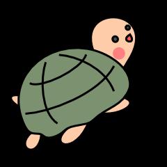 Simple turtle