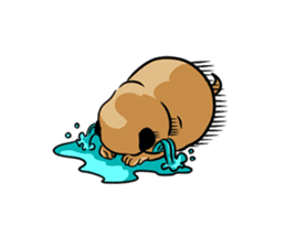 Shy of pug sticker #4087893