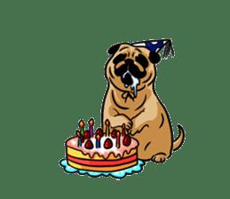 Shy of pug sticker #4087896
