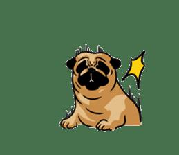 Shy of pug sticker #4087898
