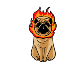 Shy of pug sticker #4087900