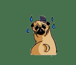 Shy of pug sticker #4087901