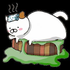 Fat cat is cute