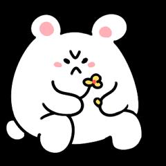 Angry Cute Bear