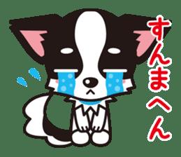 Cute Chihuahua Kansai Words Stickers sticker #4115454