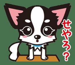 Cute Chihuahua Kansai Words Stickers sticker #4115456
