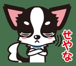 Cute Chihuahua Kansai Words Stickers sticker #4115457