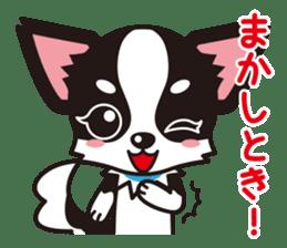 Cute Chihuahua Kansai Words Stickers sticker #4115471
