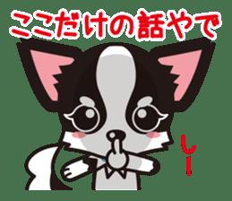 Cute Chihuahua Kansai Words Stickers sticker #4115476