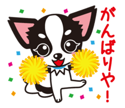 Cute Chihuahua Kansai Words Stickers sticker #4115479