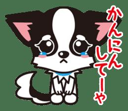 Cute Chihuahua Kansai Words Stickers sticker #4115485