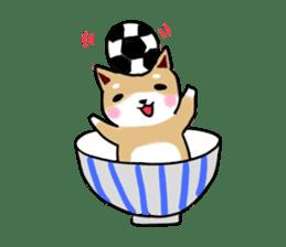 MameShiba-dog and Japanese DONBURI sticker #4154259