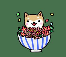 MameShiba-dog and Japanese DONBURI sticker #4154267