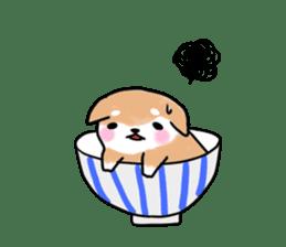 MameShiba-dog and Japanese DONBURI sticker #4154293