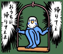 Troublesome budgerigar sticker #4181402