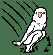Troublesome budgerigar sticker #4181404