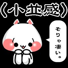 SHOBON cat 2 -For beginners-