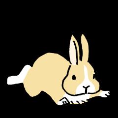 English Bunny