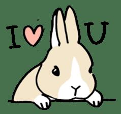 English Bunny sticker #4202707