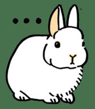 English Bunny sticker #4202721
