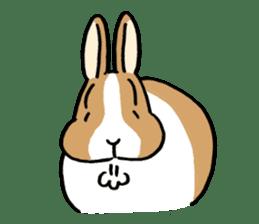 English Bunny sticker #4202723