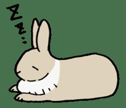 English Bunny sticker #4202731