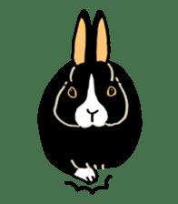 English Bunny sticker #4202734
