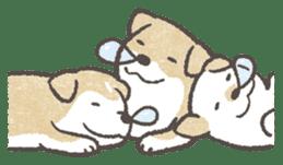 Shiba-Puppy! sticker #4256573