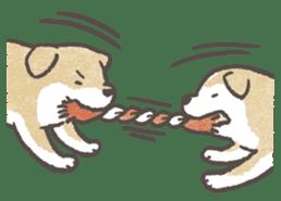 Shiba-Puppy! sticker #4256574