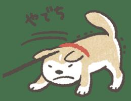 Shiba-Puppy! sticker #4256580