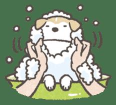 Shiba-Puppy! sticker #4256582