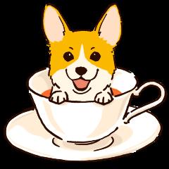 Corgi Tea Time