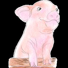 Fancy Pigs