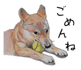 Favorite parts of SHIBAINU 2 sticker #4279330