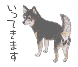 Favorite parts of SHIBAINU 2 sticker #4279332