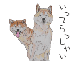 Favorite parts of SHIBAINU 2 sticker #4279333