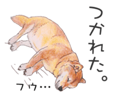 Favorite parts of SHIBAINU 2 sticker #4279340