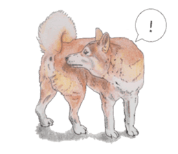 Favorite parts of SHIBAINU 2 sticker #4279345