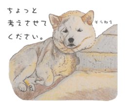 Favorite parts of SHIBAINU 2 sticker #4279346