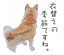 Favorite parts of SHIBAINU 2 sticker #4279352