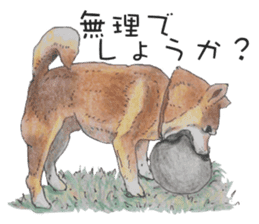Favorite parts of SHIBAINU 2 sticker #4279361