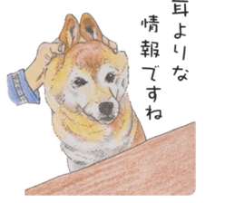 Favorite parts of SHIBAINU 2 sticker #4279367