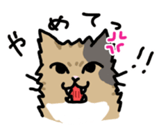 my cats vol.1 sticker #4280506