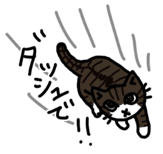 my cats vol.1 sticker #4280526