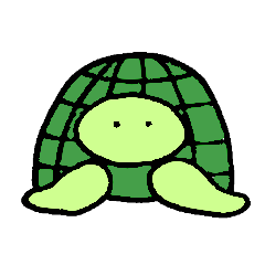 Daily turtle