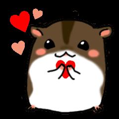 Takitarou the hamster