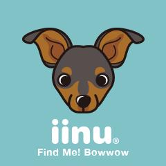 iinu - Miniature Pinscher