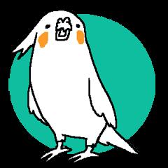 MARU the Cockatiel 2