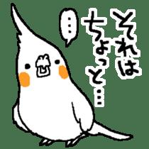 MARU the Cockatiel 2 sticker #4322469