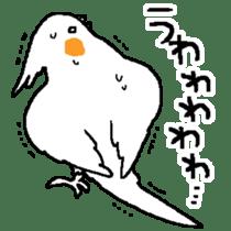 MARU the Cockatiel 2 sticker #4322471